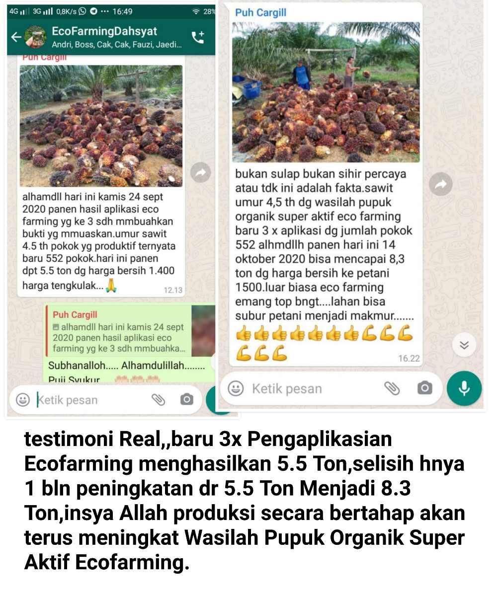 Testimonial-1.jpg